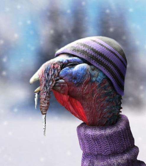 O que significa cold turkey?